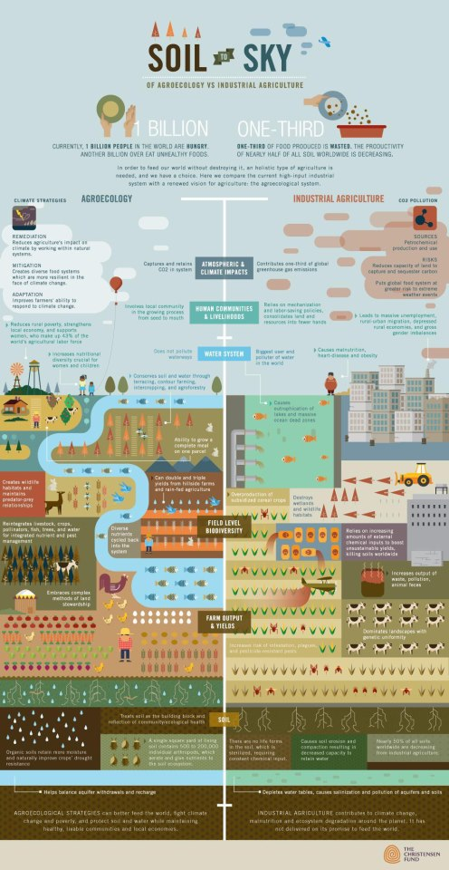 Agroecology Versus Industrial Agriculture