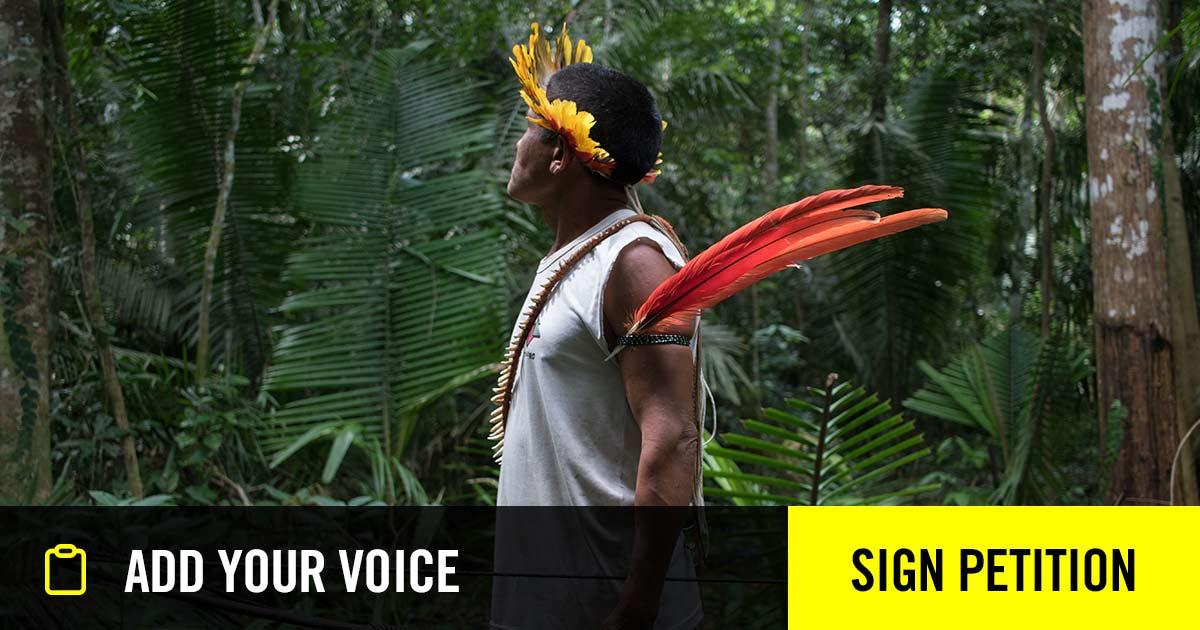 Protect Amazon