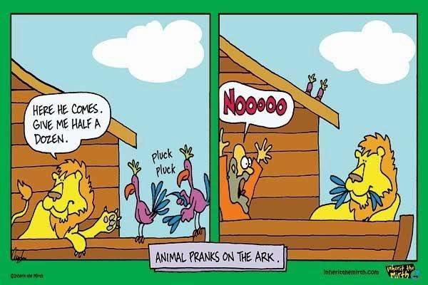 Animal Pranks On The Ark