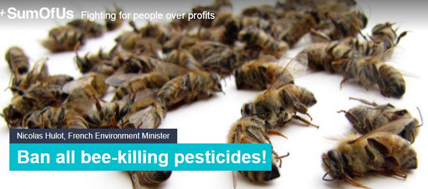 Ban Bee Killers