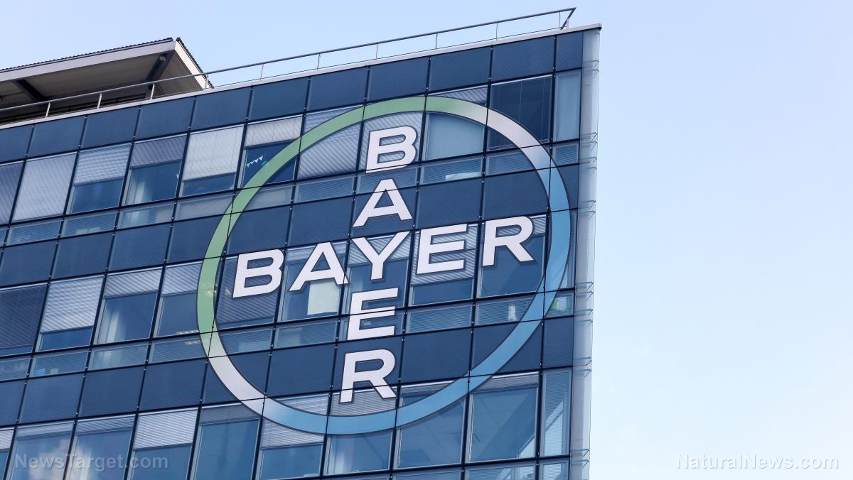 Bayer-Brand-Building