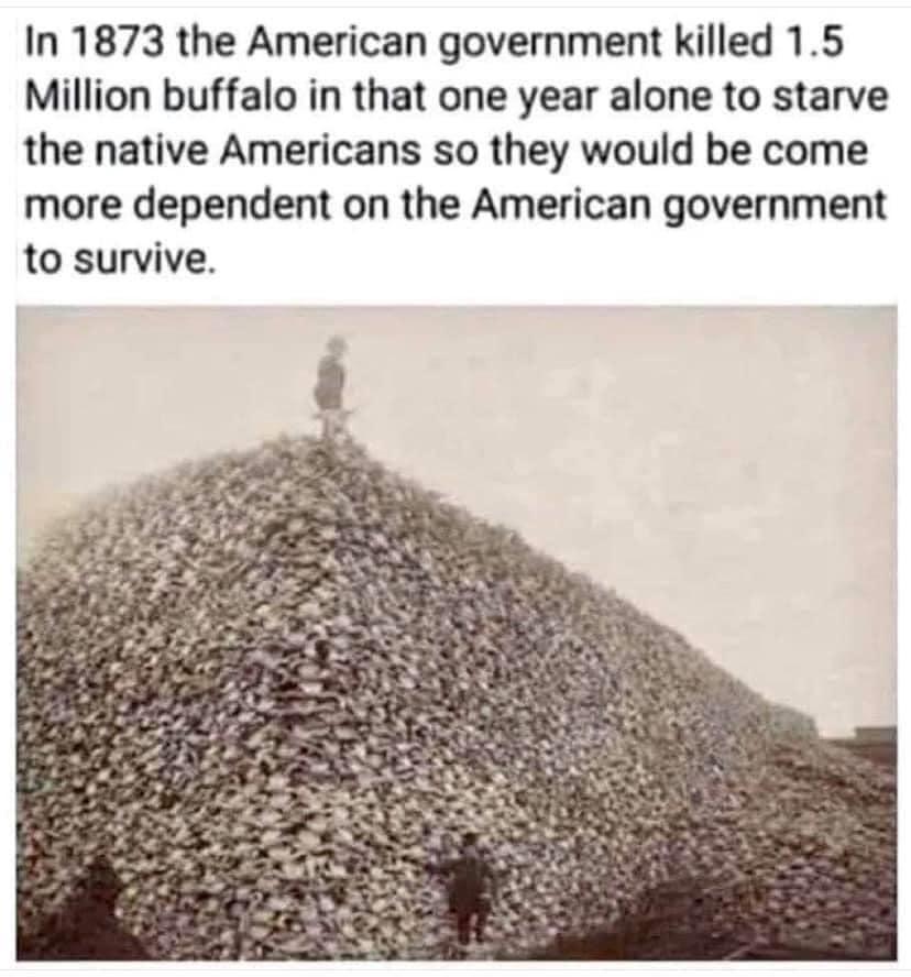 Buffalo Slaughter