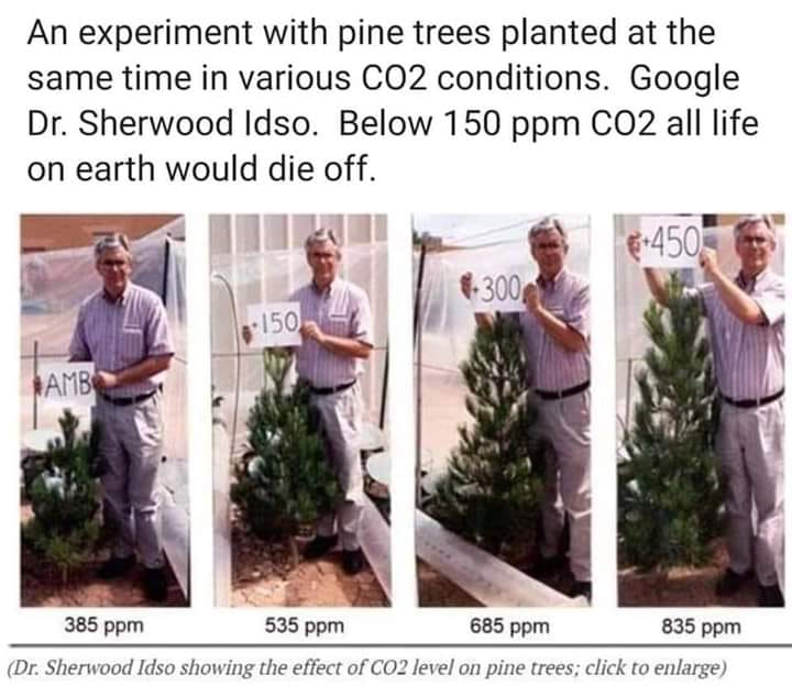 CO2 Growth Changes
