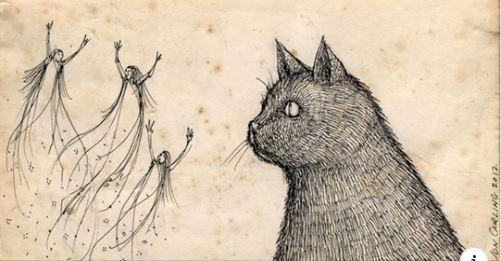 Cat Seeing Spirits