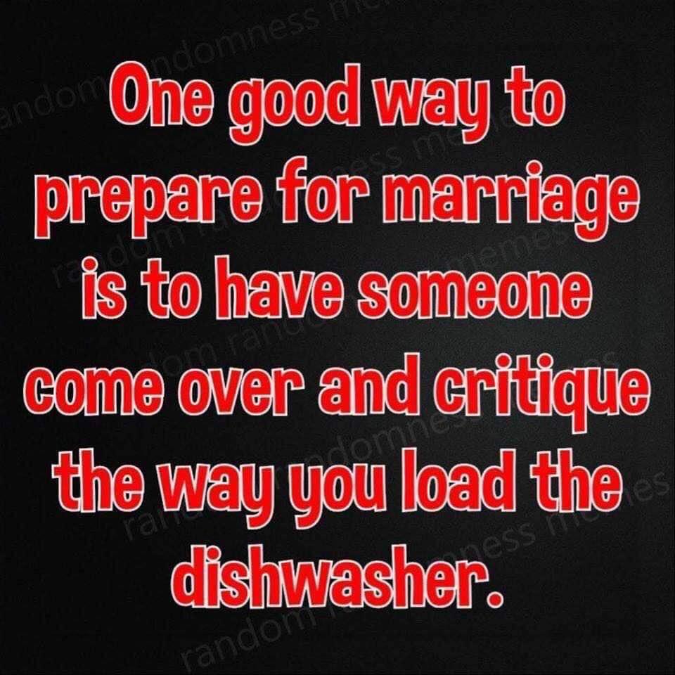 Critique Dishwasher Loading