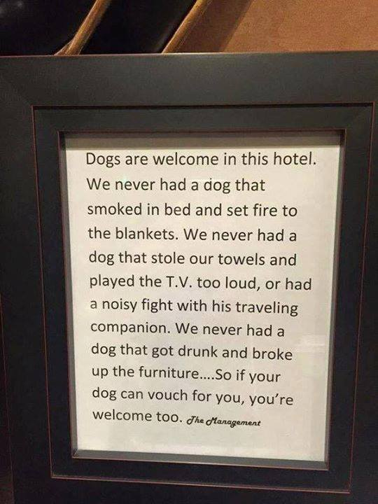 Dogs Are Welcome Here