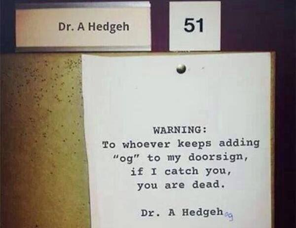Dr HedgeHog