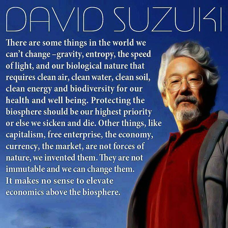 Elevate The Biosphere