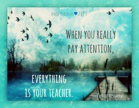 Everything Is Your Teacher