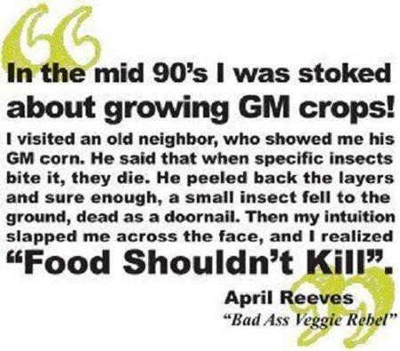 Food Should Not Kill!