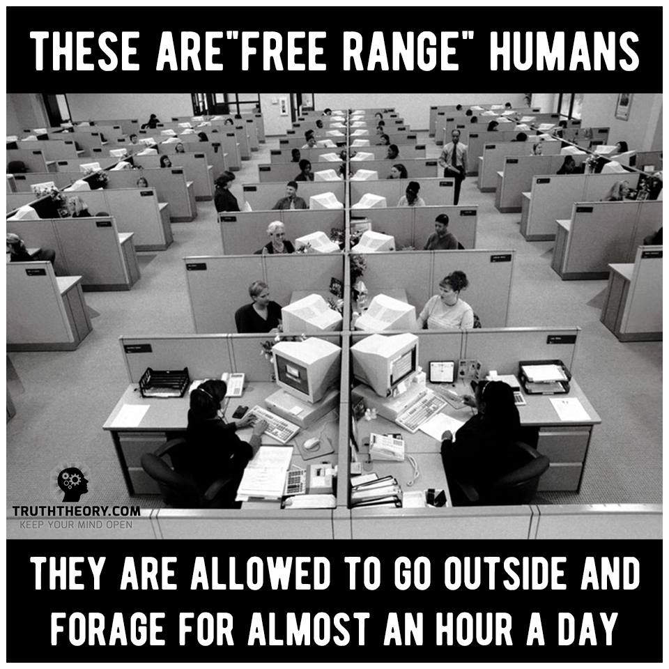 Free Range Humans - The New Slavery