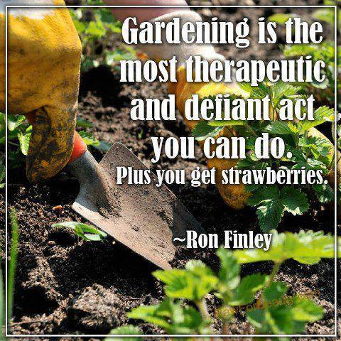 Gardening Is Therapeutic Defiance