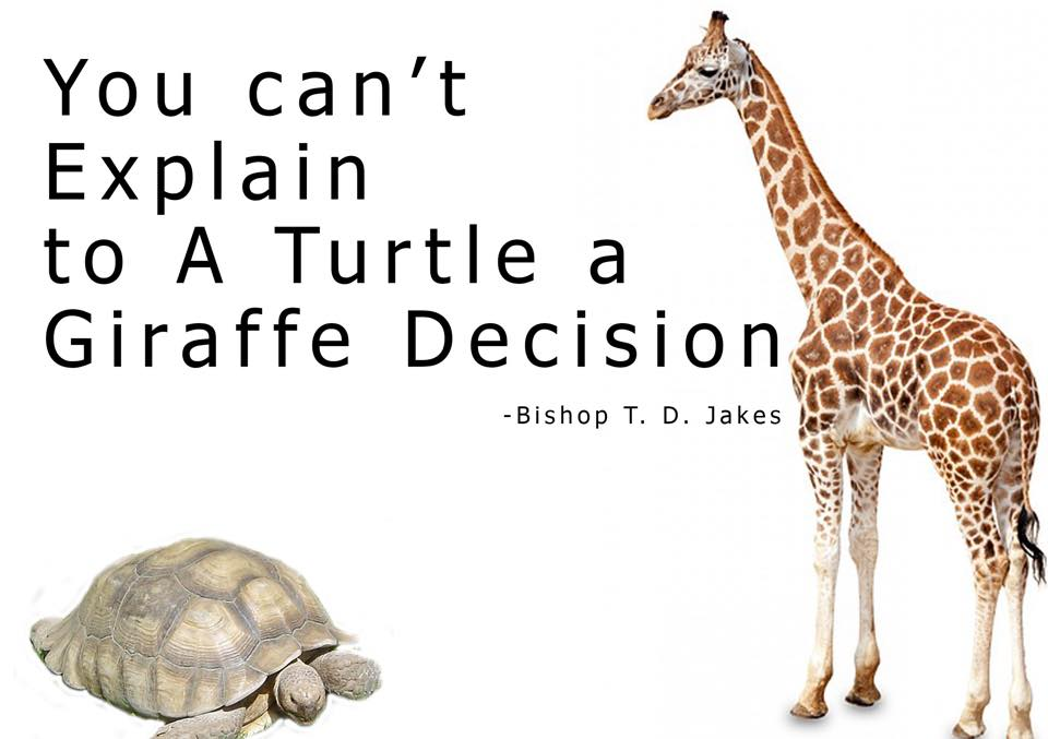 You Cannot Explain a Giraffe Decision to a Turtle