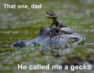 That One Dad, He Called Me A Gecko