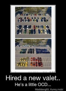Hired A New Valet