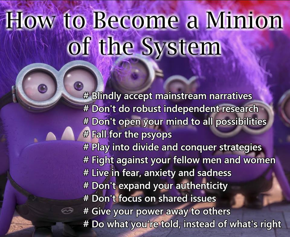 How To Be A Minion Of The System