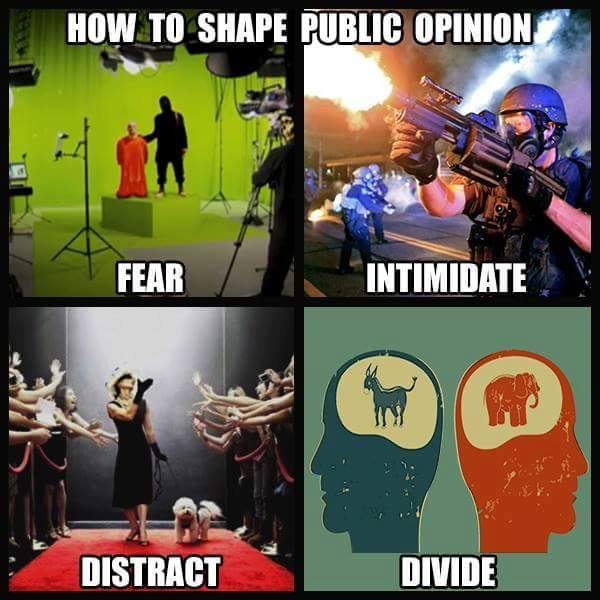 How To Shape Public Opinion