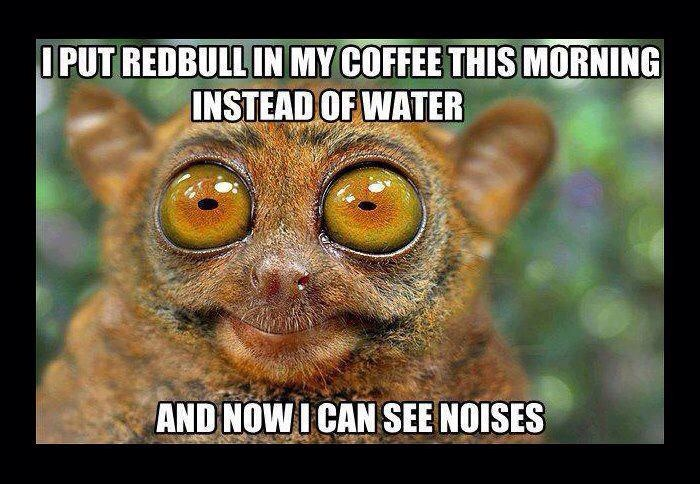 I Put Red Bull In My Coffee