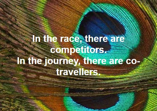 In The Journey There Are Co-Travellors