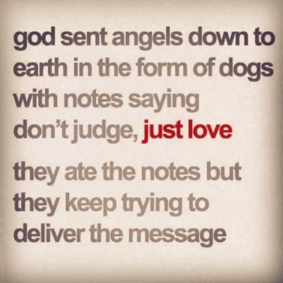 Judge Not Just Love