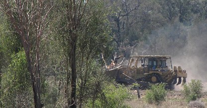 Land_Clearing
