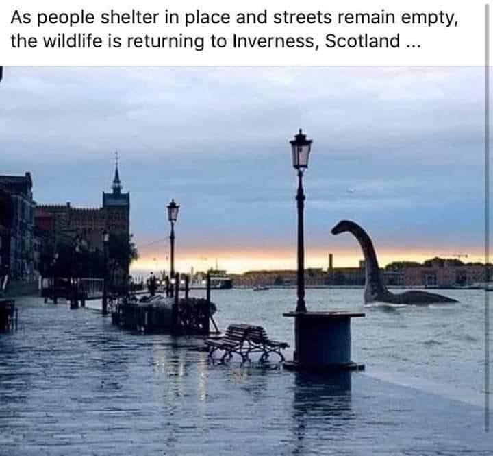 Loch Ness Returns