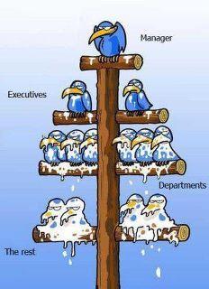 A Cartoon On Management