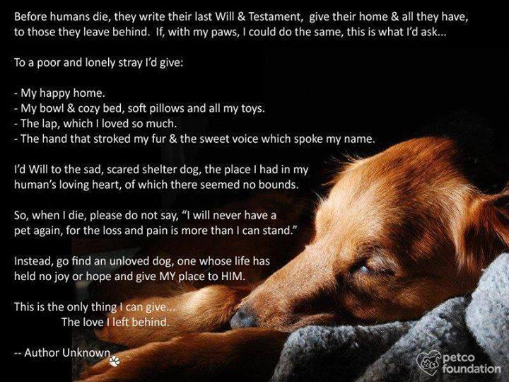 My Dog's Last Will and Testament