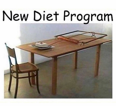 New Diet Program