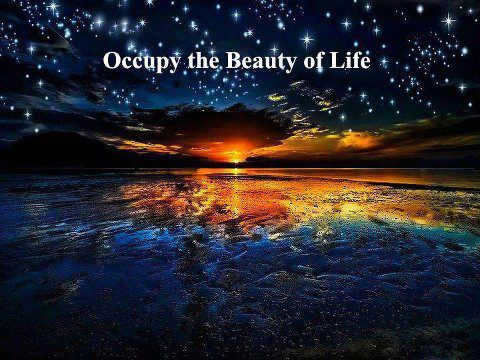 Occupy The Beauty Of Life