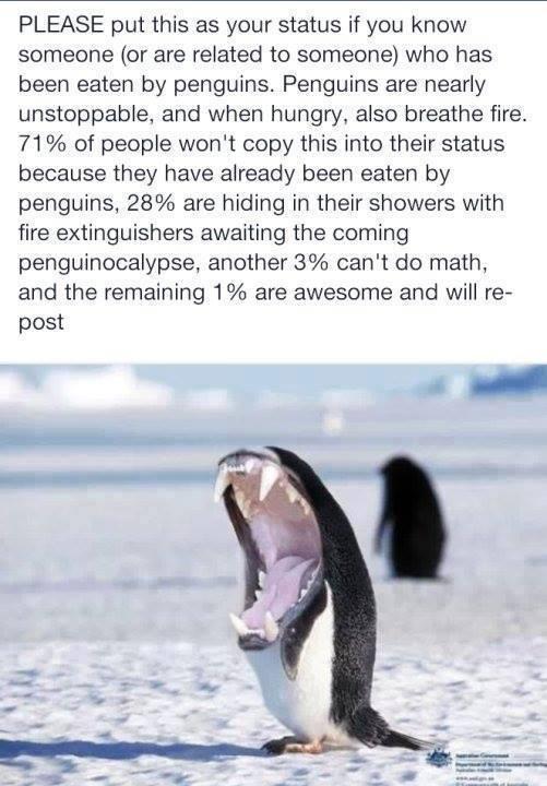 Penguin Apocalypse