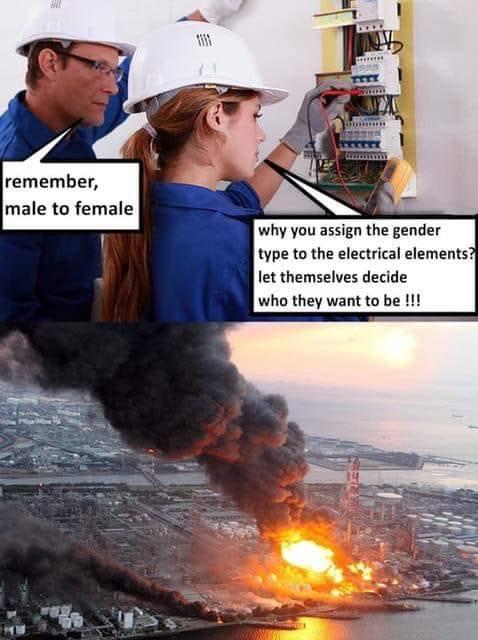 Politically Correct Disaster