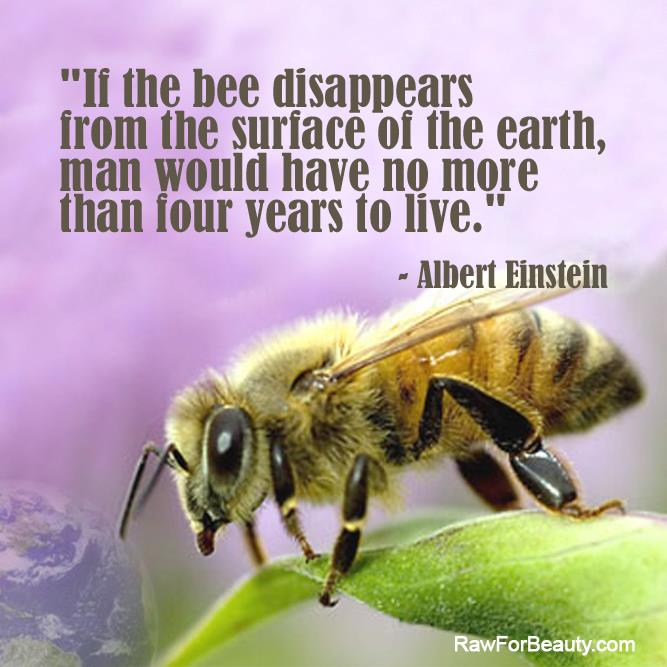 Protect Bees - Ban Bee Killing Pesticides