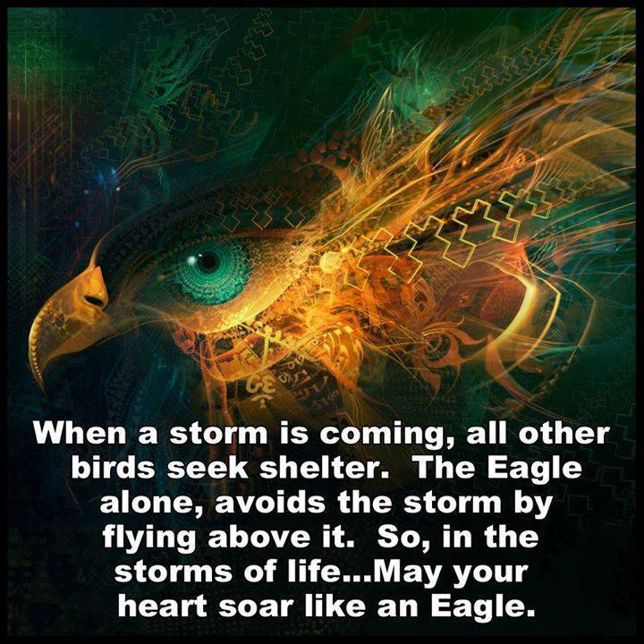 Rise Above The Storms Of Life Like An Eagle
