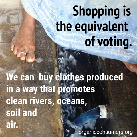 Shopping Is The Equivalent Of Voting