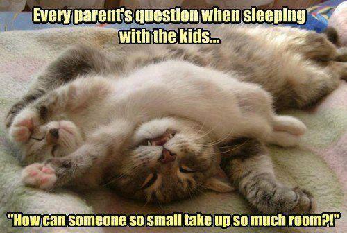 Sleeping With The Kids