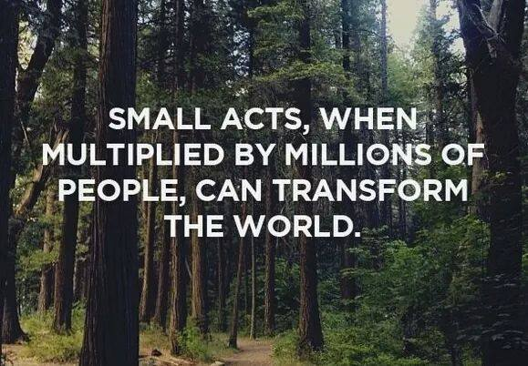 Small Acts, When Multiplied, Can Change The World