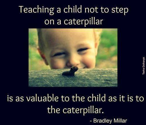 Teaching A Child Not To Step On A Caterpillar