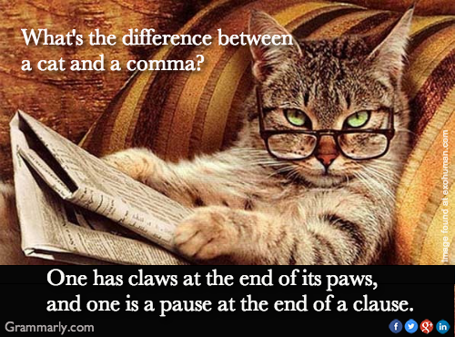 What Is The Difference Between A Cat And A Comma