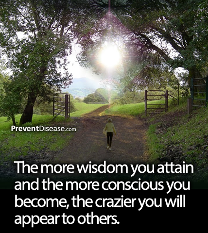 The More Wisdom You Attain