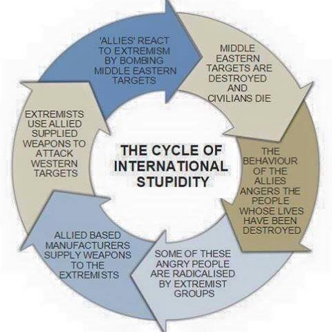 The Stupid Cycle