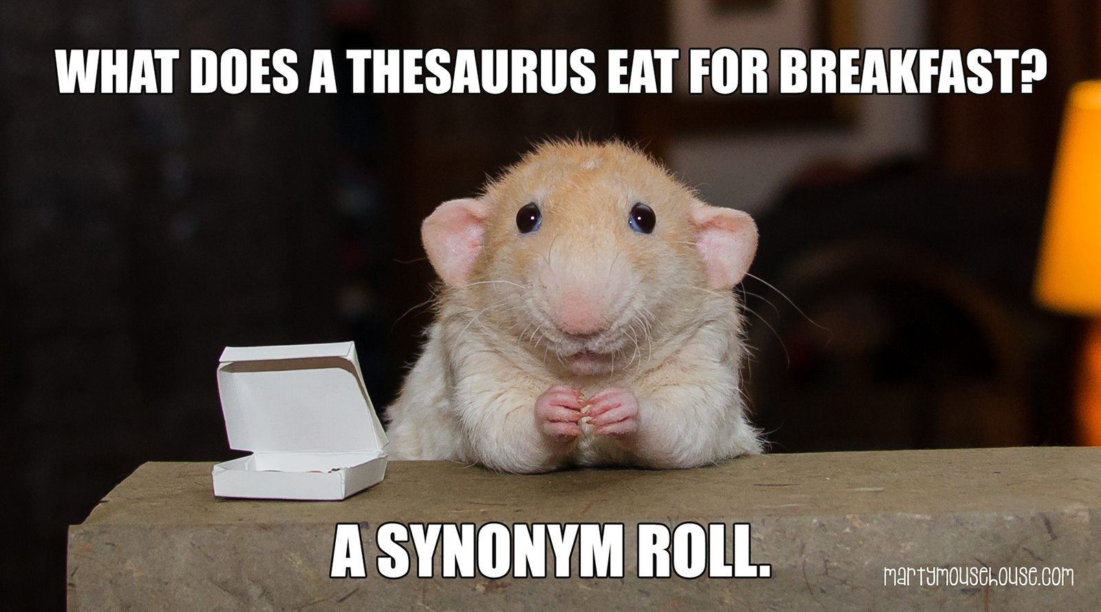 What Does A Thesaurus Eat For Breakfast?