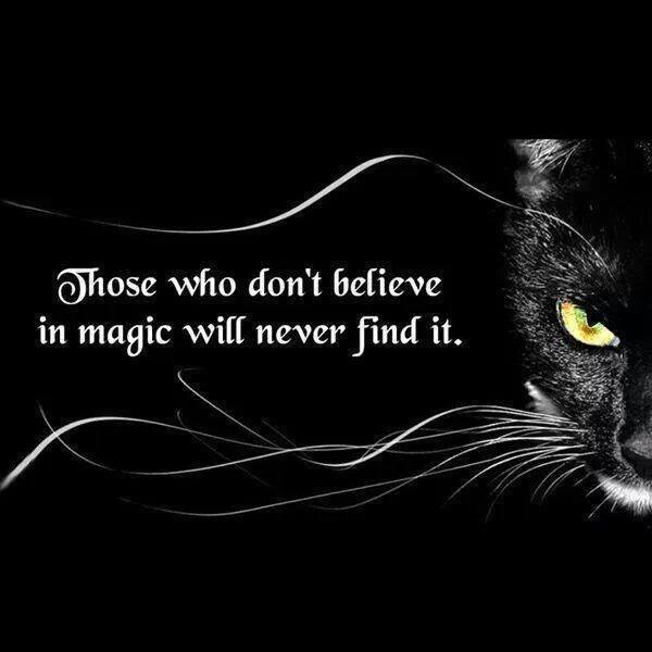 Those Who Dont Believe  In Magic
