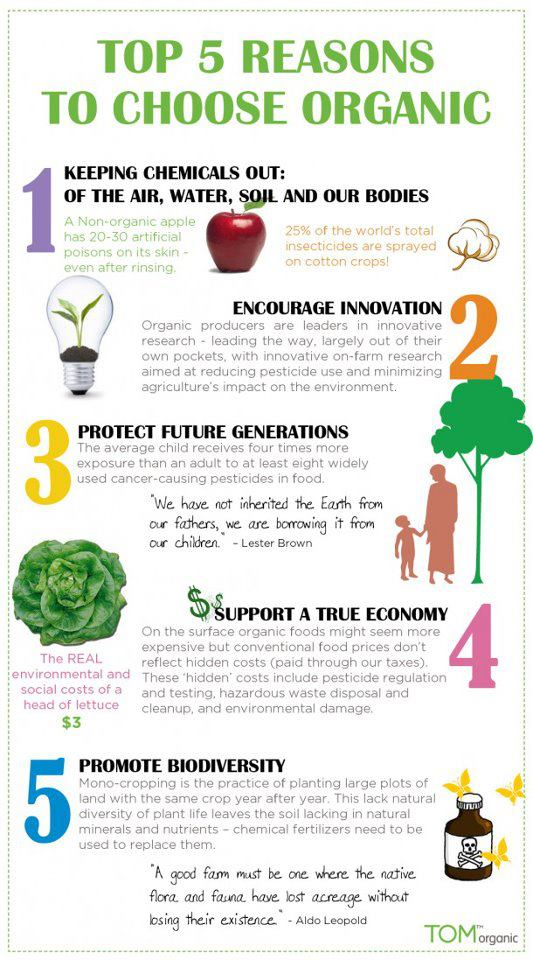 Top 5 Reasons To Choose Organic