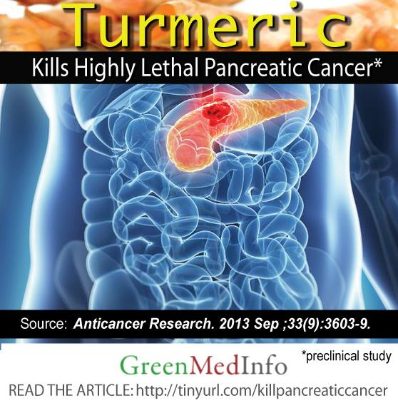 Turmeric Kills Pancreatic Cancer