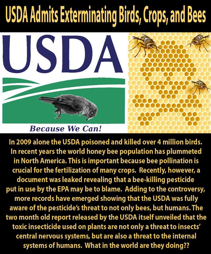 USDA - We Kill Because We Can