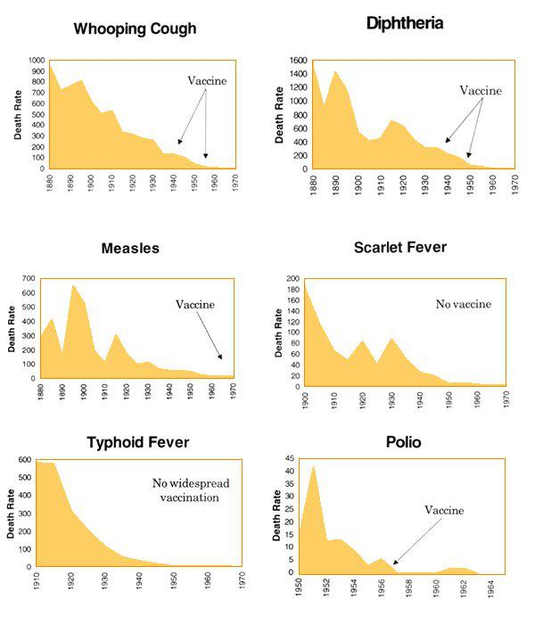 Disease\Vaccination Graphs