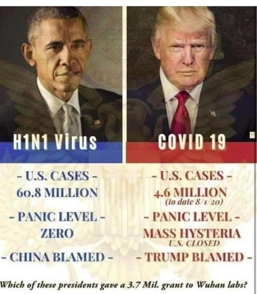 Virus Comparison