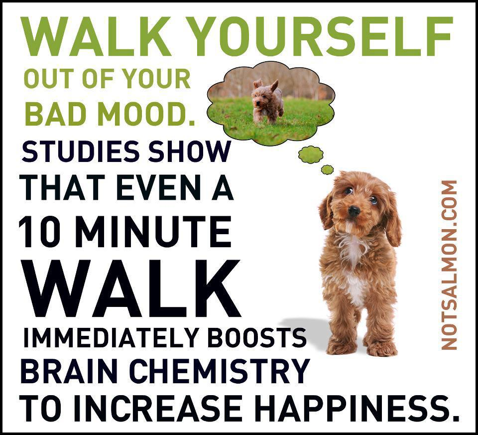 Walk Yourself Happy