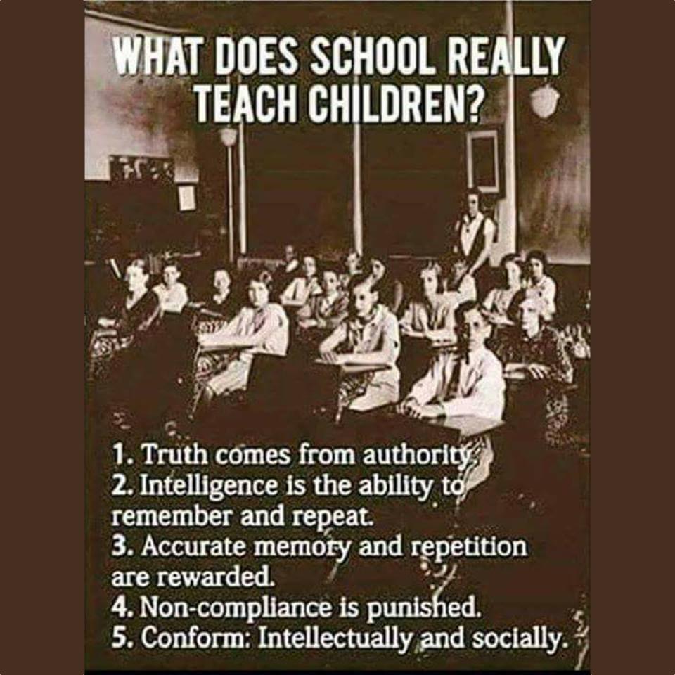 What Does School Teach Children?